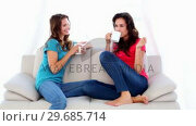 Купить «Lovely chatting women sitting on couch holding mugs», видеоролик № 29685714, снято 14 августа 2013 г. (c) Wavebreak Media / Фотобанк Лори