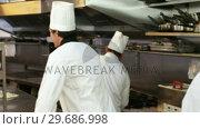 Купить «Team of chef motivating themselves», видеоролик № 29686998, снято 23 ноября 2015 г. (c) Wavebreak Media / Фотобанк Лори