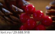 Купить «Pine cones with fake snow and cherry on wooden plank», видеоролик № 29688918, снято 30 августа 2016 г. (c) Wavebreak Media / Фотобанк Лори