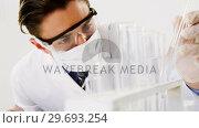 Купить «Lab technician checking sample in tube», видеоролик № 29693254, снято 18 августа 2018 г. (c) Wavebreak Media / Фотобанк Лори