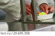 Купить «Close-up of team of chefs garnishing dishes», видеоролик № 29695358, снято 21 ноября 2016 г. (c) Wavebreak Media / Фотобанк Лори