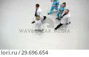 Купить «Team of doctors walking in corridor», видеоролик № 29696654, снято 19 ноября 2016 г. (c) Wavebreak Media / Фотобанк Лори
