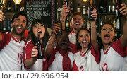 Купить «Friends cheering while having beer at bar counter », видеоролик № 29696954, снято 15 ноября 2016 г. (c) Wavebreak Media / Фотобанк Лори