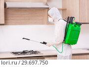 Купить «Professional contractor doing pest control at kitchen», фото № 29697750, снято 29 октября 2018 г. (c) Elnur / Фотобанк Лори