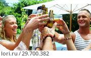 Купить «Group of happy friends toasting beer bottles and glasses at outdoors barbecue party», видеоролик № 29700382, снято 1 февраля 2017 г. (c) Wavebreak Media / Фотобанк Лори