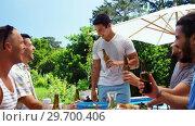 Купить «Group of happy friends enjoying the drinks at outdoors barbecue party», видеоролик № 29700406, снято 1 февраля 2017 г. (c) Wavebreak Media / Фотобанк Лори