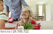 Купить «Father with his kids giving surprise gift to wife in living room », видеоролик № 29700722, снято 8 ноября 2016 г. (c) Wavebreak Media / Фотобанк Лори