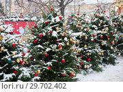 Купить «Красивые новогодние елки на Тверской площади рядом с каруселью. Москва», фото № 29702402, снято 3 января 2019 г. (c) Екатерина Овсянникова / Фотобанк Лори