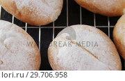 Купить «Dough balls with icing sugar on baking tray 4k», видеоролик № 29706958, снято 5 мая 2017 г. (c) Wavebreak Media / Фотобанк Лори