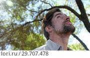 Купить «Man looking around in forest on a sunny day 4k», видеоролик № 29707478, снято 12 мая 2017 г. (c) Wavebreak Media / Фотобанк Лори