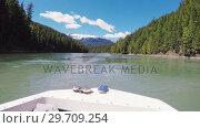 Купить «Boat moving in a calm river with trees on both side 4k», видеоролик № 29709254, снято 23 июня 2017 г. (c) Wavebreak Media / Фотобанк Лори