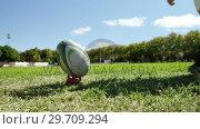Купить «Rugby player kicking the oval ball 4K 4k», видеоролик № 29709294, снято 9 февраля 2017 г. (c) Wavebreak Media / Фотобанк Лори