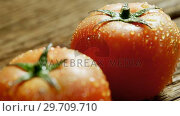 Купить «Water droplets on red tomatoes placed on wooden surface 4K 4k», видеоролик № 29709710, снято 12 июня 2017 г. (c) Wavebreak Media / Фотобанк Лори