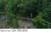 Купить «Female hiker standing on cliff in forest 4k», видеоролик № 29709854, снято 3 августа 2017 г. (c) Wavebreak Media / Фотобанк Лори