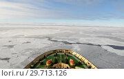 Купить «Travel on the icebreaker in the ice, Antarctica», видеоролик № 29713126, снято 28 декабря 2018 г. (c) Vladimir / Фотобанк Лори