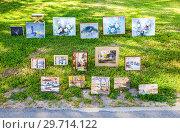Купить «Art paintings with flowers and traditional russian motives on birch bark», фото № 29714122, снято 17 августа 2017 г. (c) FotograFF / Фотобанк Лори