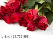 Купить «close up of red roses bunch», фото № 29735898, снято 8 февраля 2018 г. (c) Syda Productions / Фотобанк Лори