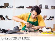 Купить «Young man repairing shoes in workshop», фото № 29741922, снято 22 октября 2018 г. (c) Elnur / Фотобанк Лори