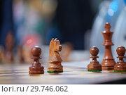 Купить «Chess», фото № 29746062, снято 25 декабря 2018 г. (c) Stockphoto / Фотобанк Лори