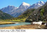 Купить «Spring in Caucasus», фото № 29750934, снято 16 мая 2014 г. (c) александр жарников / Фотобанк Лори
