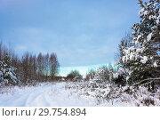 Купить «Beautiful rural landscape on a frosty winter cloudy day», фото № 29754894, снято 29 декабря 2018 г. (c) Валерий Смирнов / Фотобанк Лори