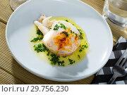Купить «Sepia served with green sauce from garlic and olive oil, served with parsley», фото № 29756230, снято 25 марта 2019 г. (c) Яков Филимонов / Фотобанк Лори