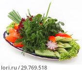 Купить «Beautifully served fresh vegetables on a plate with an ornament on a white background.», фото № 29769518, снято 15 февраля 2012 г. (c) Марина Володько / Фотобанк Лори
