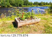 Купить «Flowers grow in a wooden flowerpot on the river bank in summertime», фото № 29779874, снято 18 июня 2019 г. (c) FotograFF / Фотобанк Лори
