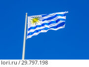 Flag of Uruguay waving in the wind against the sky. Стоковое фото, фотограф FotograFF / Фотобанк Лори