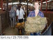 Купить «Couple of farmers working at stable», фото № 29799086, снято 2 октября 2018 г. (c) Яков Филимонов / Фотобанк Лори