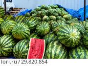 Купить «Точка продажи арбузов на овощном рынке», фото № 29820854, снято 19 августа 2018 г. (c) Вячеслав Палес / Фотобанк Лори