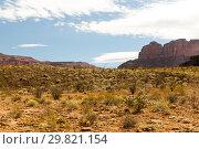Купить «view of grand canyon desert», фото № 29821154, снято 1 марта 2018 г. (c) Syda Productions / Фотобанк Лори