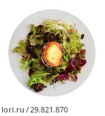 Купить «Salad with goat cheese», фото № 29821870, снято 22 апреля 2019 г. (c) Яков Филимонов / Фотобанк Лори