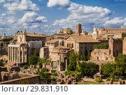 Купить «View of the Roman Forum. Rome, Italy», фото № 29831910, снято 9 сентября 2017 г. (c) Наталья Волкова / Фотобанк Лори