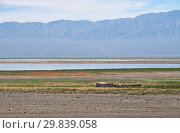 Mongolian shepherd's house on the background of the lake Dzergiin Tsagaan Nuur in Mongolia (2017 год). Стоковое фото, фотограф Serg Zastavkin / Фотобанк Лори
