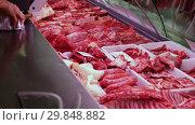 Купить «Chicken displayed for sale in butcher's shop», видеоролик № 29848882, снято 29 июня 2018 г. (c) Яков Филимонов / Фотобанк Лори