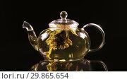 Купить «Green Chinese tea flower bud blooming in glass teapot on a black background», видеоролик № 29865654, снято 5 февраля 2019 г. (c) Алексей Кузнецов / Фотобанк Лори