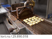 Купить «candies processing by chocolate coating machine», фото № 29890018, снято 4 декабря 2018 г. (c) Syda Productions / Фотобанк Лори
