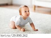 Купить «little baby crawling on floor at home», фото № 29890262, снято 12 июля 2016 г. (c) Syda Productions / Фотобанк Лори
