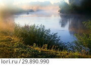 Купить «Early foggy morning and a small river», фото № 29890990, снято 8 августа 2018 г. (c) Galina Tolochko / Фотобанк Лори