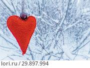 Купить «Handmade red woolen felt heart hanging on snowy branch», фото № 29897994, снято 28 января 2019 г. (c) Kira_Yan / Фотобанк Лори
