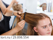 Купить «Hands of hairdresser making hairstyle for girl», фото № 29898554, снято 26 июня 2018 г. (c) Яков Филимонов / Фотобанк Лори