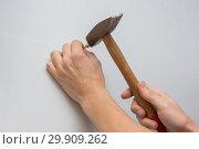 Купить «Мужская рука забивает молотком гвоздь в стену», фото № 29909262, снято 27 января 2019 г. (c) Иванов Алексей / Фотобанк Лори