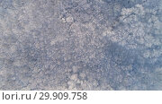 Купить «Aerial view of winter forest covered with snow», видеоролик № 29909758, снято 18 января 2019 г. (c) Михаил Коханчиков / Фотобанк Лори