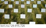 Купить «Aerial view of solar power station installed in green field», видеоролик № 29915726, снято 23 декабря 2018 г. (c) Яков Филимонов / Фотобанк Лори