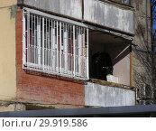 Купить «Девятиэтажный четырнадцатиподъездный панельный жилой дом серии II-49Д (1969 года постройки). Планерная улица, 12, корпус 1. Район Северное Тушино. Город Москва», эксклюзивное фото № 29919586, снято 15 марта 2015 г. (c) lana1501 / Фотобанк Лори
