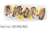 Купить «Oysters with lemon on plate», фото № 29942862, снято 19 марта 2019 г. (c) Яков Филимонов / Фотобанк Лори