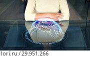 Купить «woman at smart screen and virtual earth projection», видеоролик № 29951266, снято 22 мая 2019 г. (c) Syda Productions / Фотобанк Лори