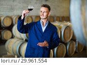 Купить «Male winemaker in uniform having glass of wine in hands in cellar», фото № 29961554, снято 27 мая 2019 г. (c) Яков Филимонов / Фотобанк Лори