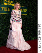 Купить «London Evening Standard Awards Red Carpet Arrivals at the Theatre Royal, Drury Lane, in London. Featuring: Cate Blanchett Where: London, United Kingdom When: 03 Dec 2017 Credit: WENN.com», фото № 29966790, снято 3 декабря 2017 г. (c) age Fotostock / Фотобанк Лори